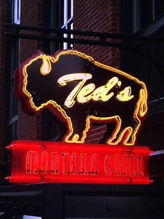 TED'S MONTANA GRILL  Concept