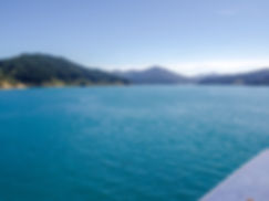Ferry views on the way to Picton.jpg
