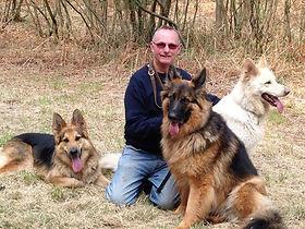 The three dogs.jpg