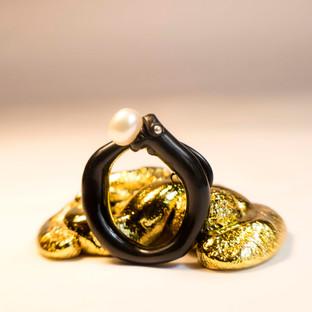 anillo y broche.jpg