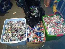 80 lbs of Crushed Cans