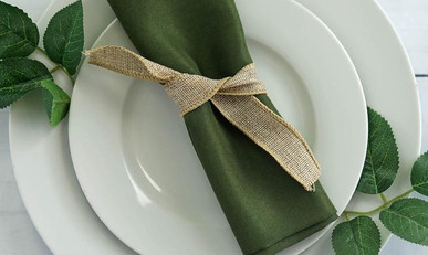 20 In. Moss Green Napkins