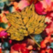 Tulip Poplar alcohol ink on yupo 6x8 Ali