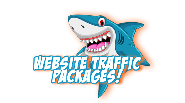 website-traffic-packages.png