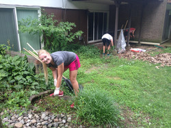 Tidy up in the community