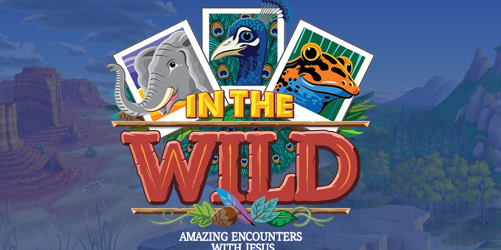 VBS - In The Wild - Amazing Encounters with Jesus
