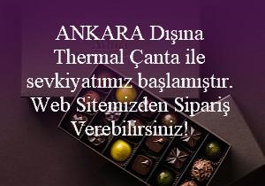 Thermal Çanta Banner.png