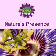 Nature's Presence