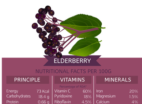 Eldelberry Benefits - A Natural Way to Boost Immunity