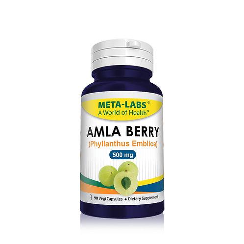 AMLA BERRY, 90 CT