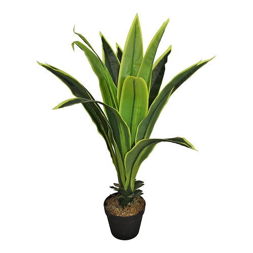 Artificial 80cm Dracaena Plant