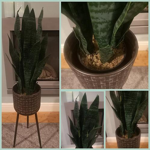 Artificial 70cm Snake Plant