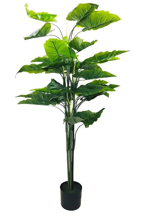 Artificial 145cm Taro Plant