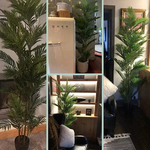Artificial 200cm Palm Plant
