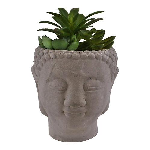 Large Succulent Buddha Head Planter