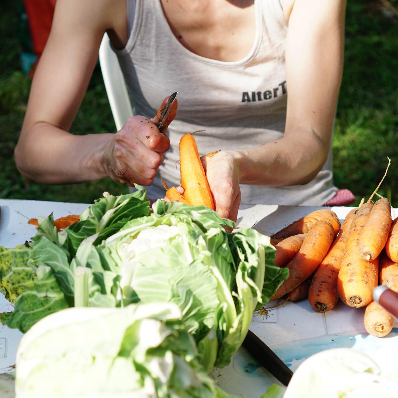 Repas sains dans des corps sains !