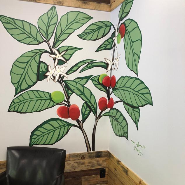 Coffee Plant mural
