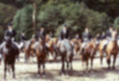 im199001.jpg