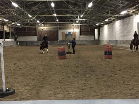 Dressur- und Working Equitation-Kurs mit Nuno Avelar