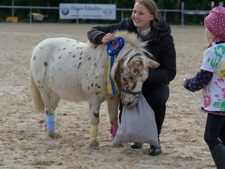 3. Pfälzer Pferdefest