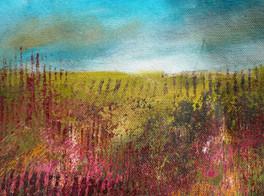 Summer Landscape Experiment 1