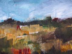 Landscape cloth experiment 1