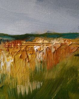 Landscape Focus