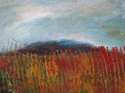 Landscape Experiement 3