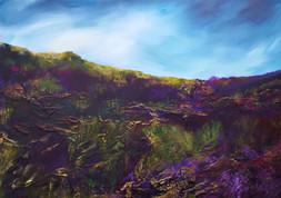 Heathered Moors