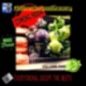Copy of MMX HoodGroc v1_edited.jpg