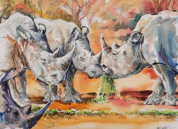 Zambia Rhinos | Watercolor