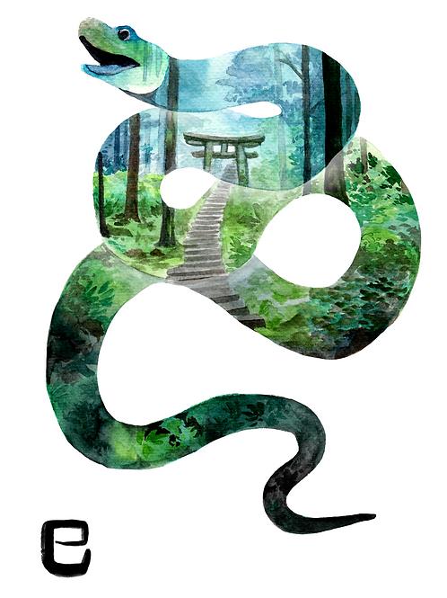Zodiac SnakeA4 Watercolour Print