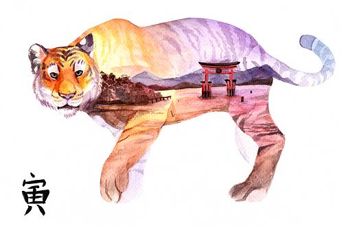 Zodiac Tiger A4 Watercolour Print