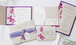 Gallery Cards