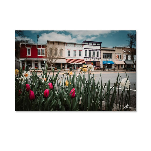 Laura Atchison's Granville in Spring