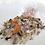 Thumbnail: Fleur Thought -Inner Peace Bath Brew