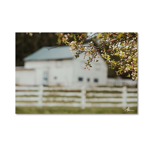 Laura Atchison's Barn in Granville