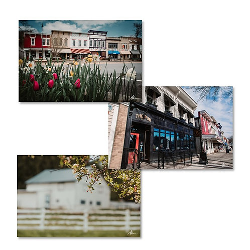 Laura Atchison's Photography Around Town