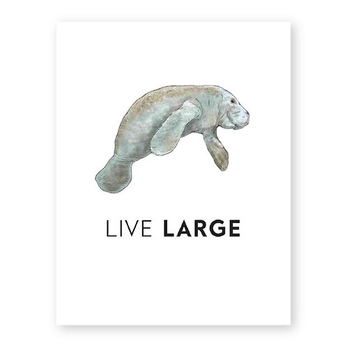 CG873 Live Large