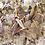 Thumbnail: Fleur Thought - Clarity Bath Brew