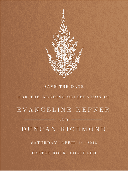 Envelopments - Marry Me Under the Tree Save the Date