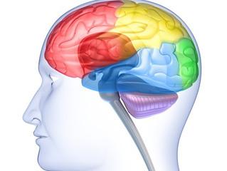 Psiquiatra português é o Melhor Jovem Investigador na área da esquizofrenia