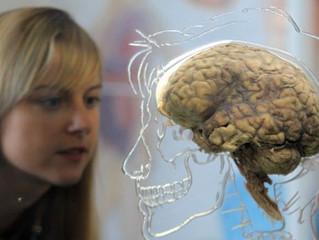 Treinar o cérebro para vencer maus hábitos