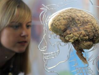 A dependência digital prejudica a memória?
