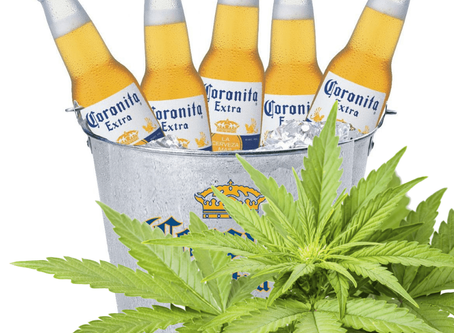 Maker of Corona Invests $4 Billion in Cannabis