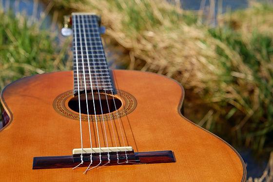 guitar-2276181_960_720.jpg