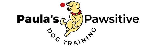 Paula's%20Pawsitive%20Dog%20Training-04_