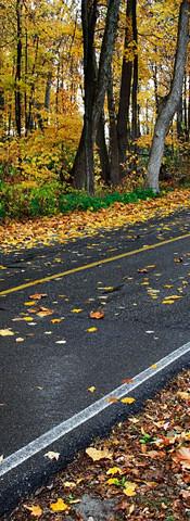 ohio-road