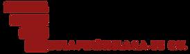 Logo TPP-transparente.png