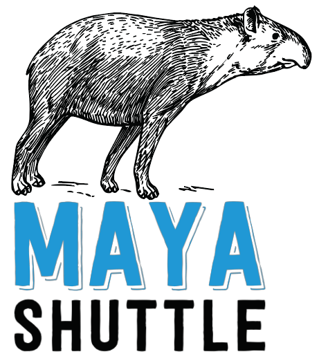 Maya Shuttle.png